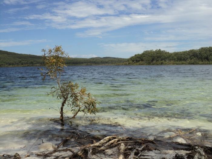 The lake - ©Bard 2012